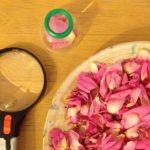 Rose petal investigations